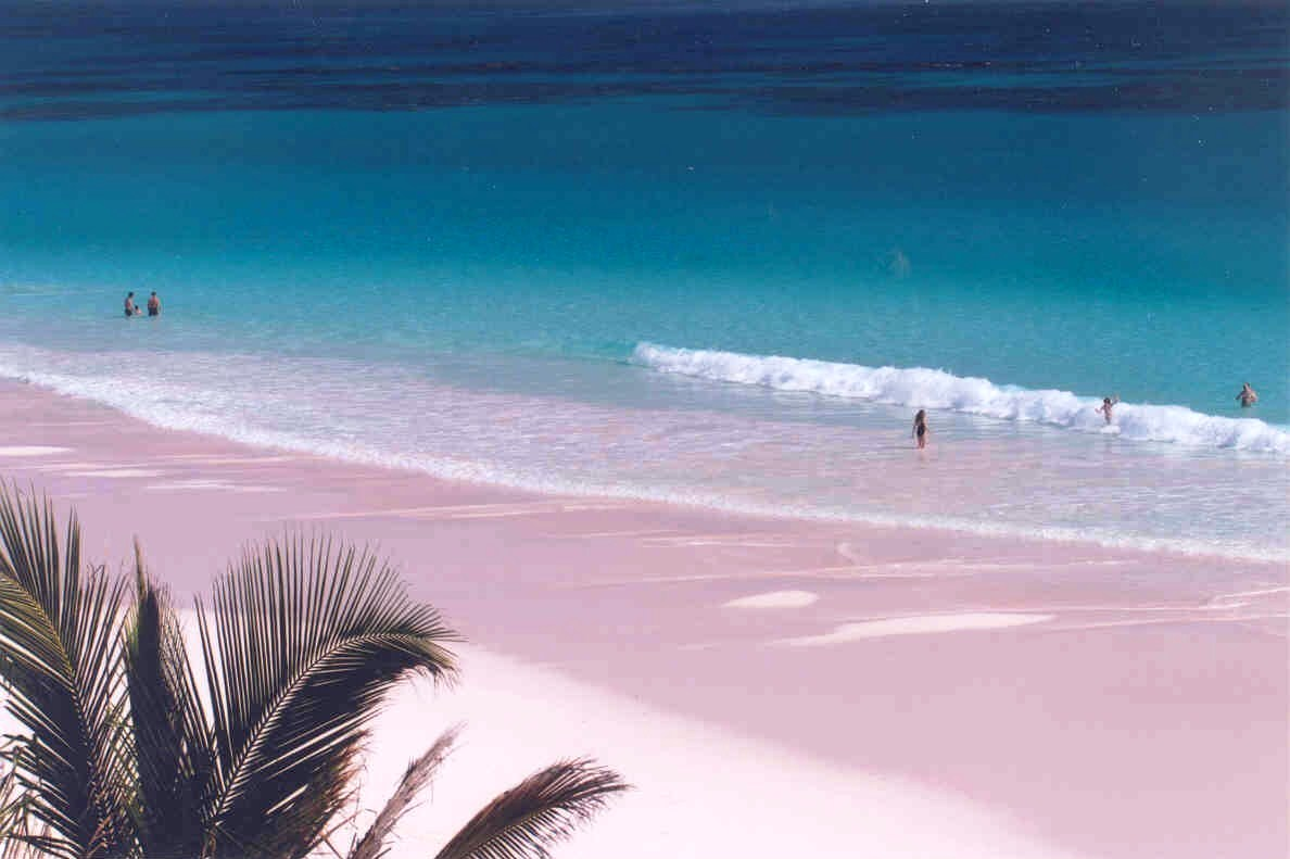 Fantastic sandy beaches on Harbour Island in the Bahamas