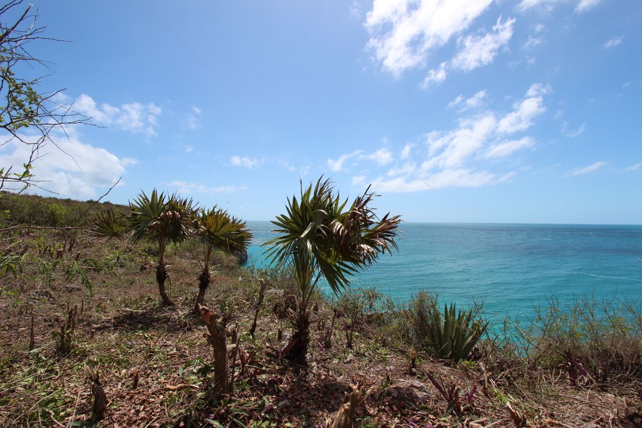 /listing-waterfront-12310.html from Coldwell Banker Bahamas Real Estate