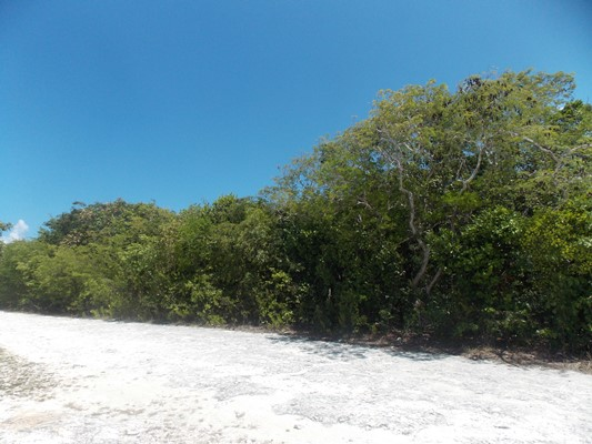 /listing-vacant-lot-13428.html from Coldwell Banker Bahamas Real Estate