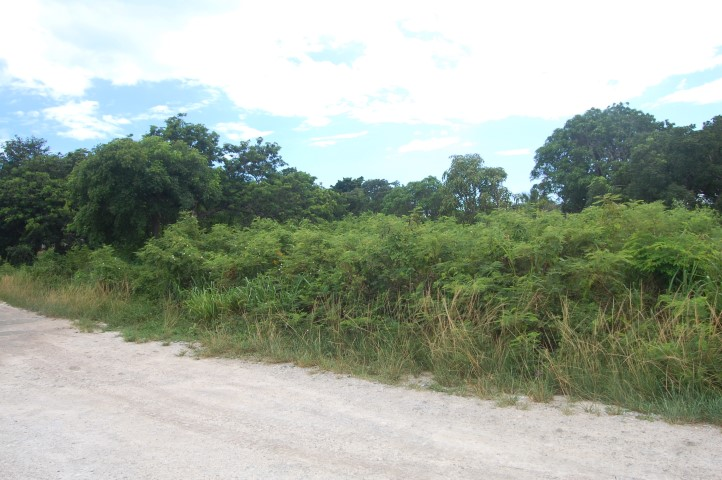/listing-russell-island-lot-13432.html from Coldwell Banker Bahamas Real Estate
