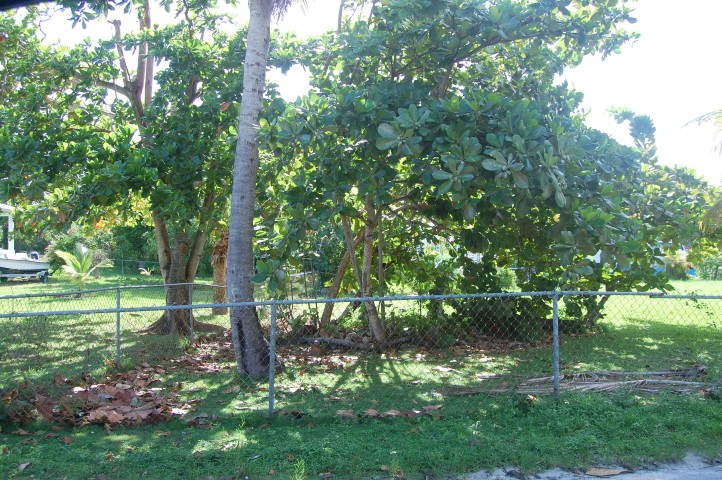 /listing-spanish-wells-lot-13603.html from Coldwell Banker Bahamas Real Estate
