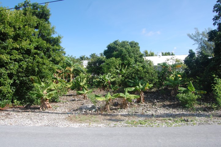 /listing-spanish-wells-lots-13604.html from Coldwell Banker Bahamas Real Estate