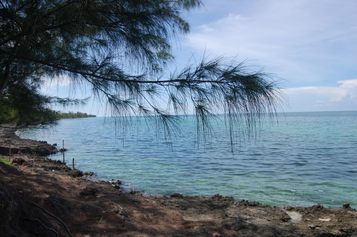 /listing-russell-island-lot-13608.html from Coldwell Banker Bahamas Real Estate