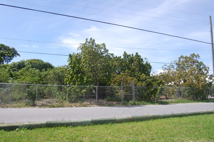 /listing-russell-island-lot-13609.html from Coldwell Banker Bahamas Real Estate
