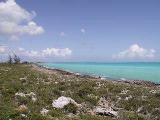 /listing-current-road-1378.html from Coldwell Banker Bahamas Real Estate