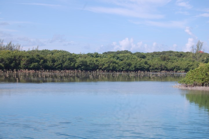 /listing-waterfront-lot-spanish-wells-13825.html from Coldwell Banker Bahamas Real Estate