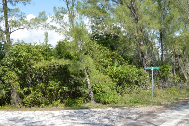 Vacant Lot Bahama Palm Shores