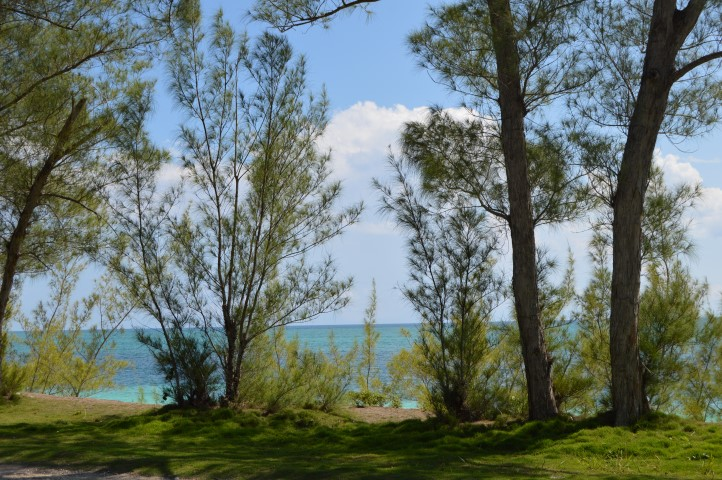 Ocean View Lot Bahama Palm Shores