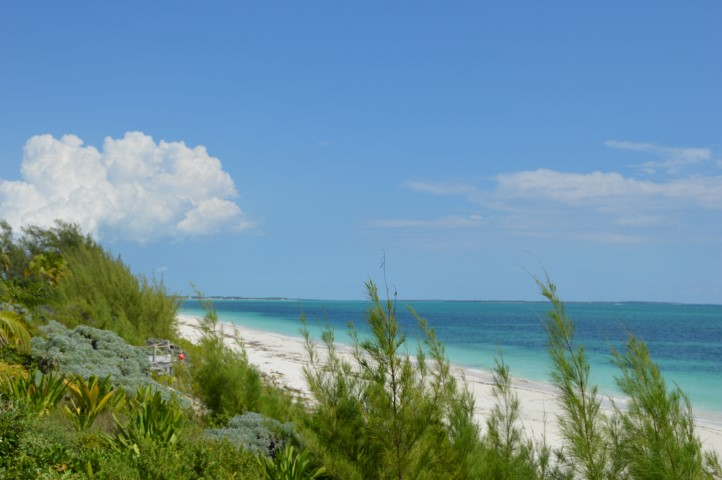 Property For Sale in Bahama Palm Shores