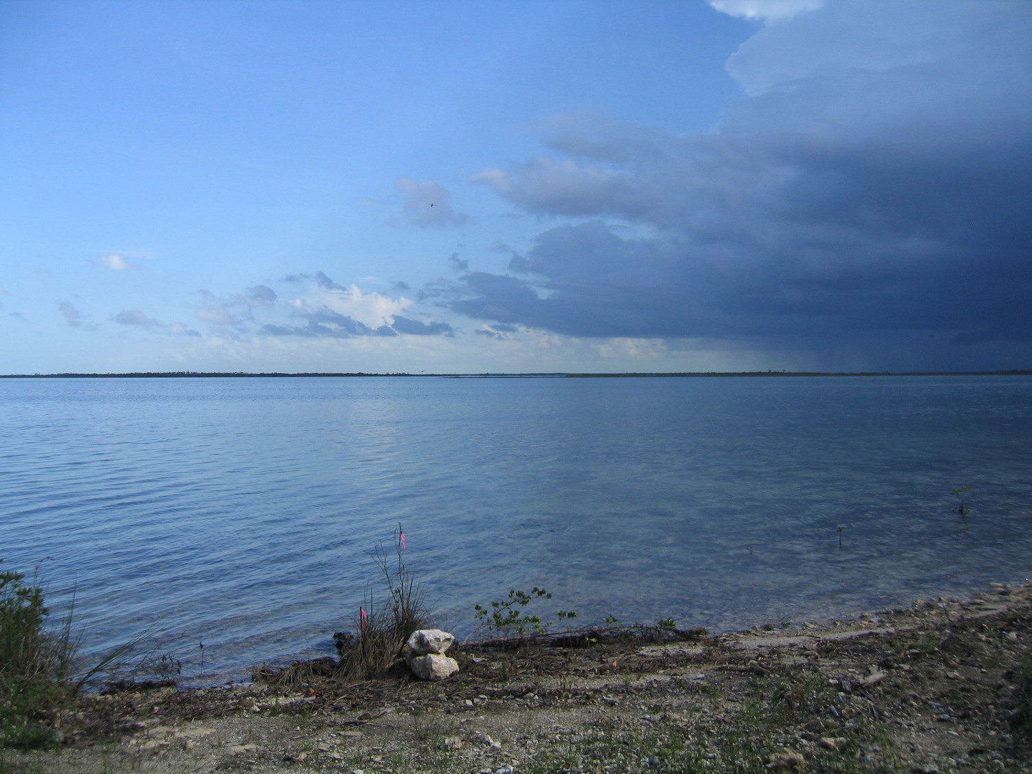 /listing-water-front-fresh-creek-andros-lot-6-14647.html from Coldwell Banker Bahamas Real Estate