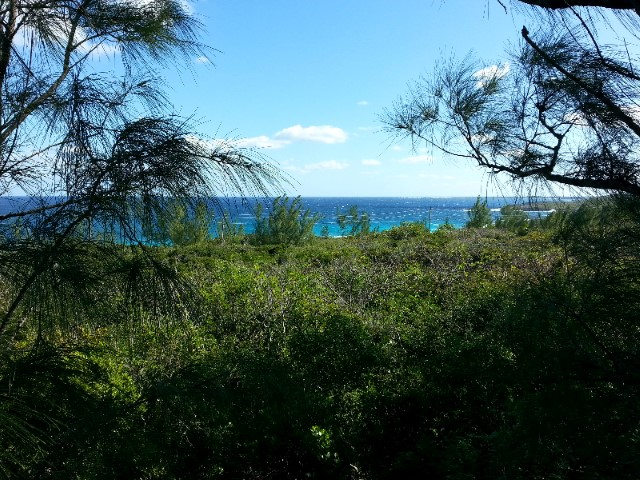 /listing-reduced-lost-gold-road-rainbow-bay-15432.html from Coldwell Banker Bahamas Real Estate
