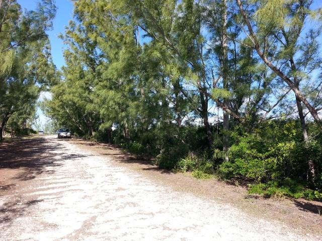 Tiny House Vacation: stay small but live large on Eleuthera, Bahamas