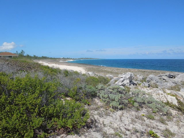 /listing-whale-point-lot-11-15840.html from Coldwell Banker Bahamas Real Estate