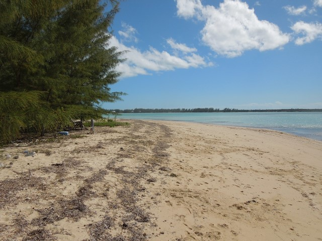 /listing-whale-point-lot-48-ideal-for-condos-15842.html from Coldwell Banker Bahamas Real Estate