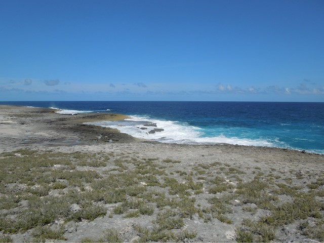 /listing-whale-point-lot-of-2-16261.html from Coldwell Banker Bahamas Real Estate