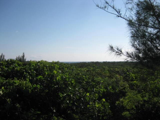 Ocean View Acreage For Sale