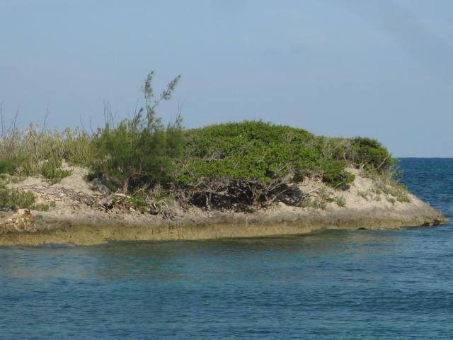 Sea View Acreage in Abaco