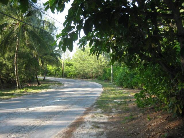 Vacant Land For Sale in Abaco