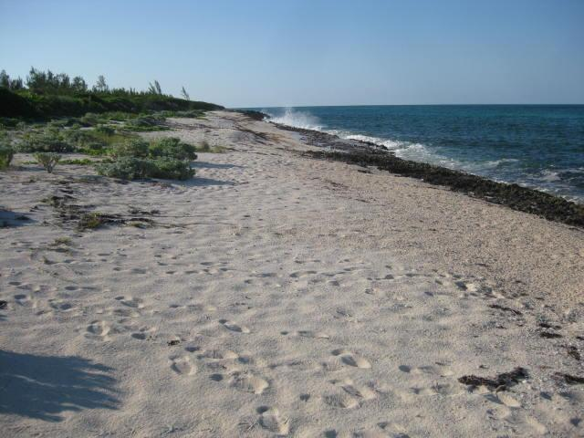 Oceanfront Acreage For Sale