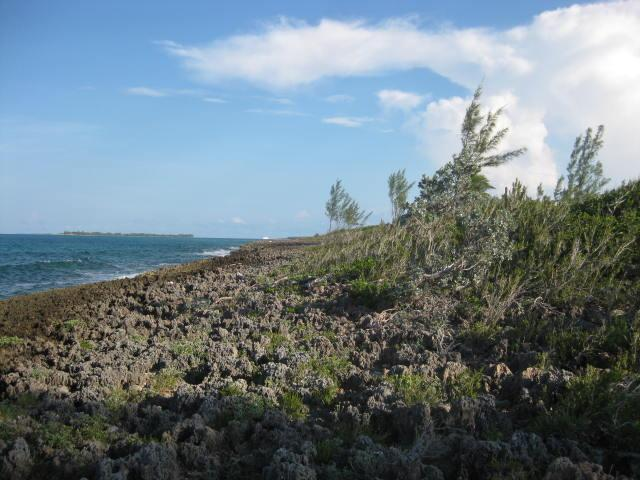 Oceanfront Land For Sale in Abaco