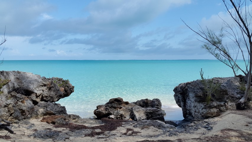 /listing-current-north-beach-lot-3-16603.html from Coldwell Banker Bahamas Real Estate