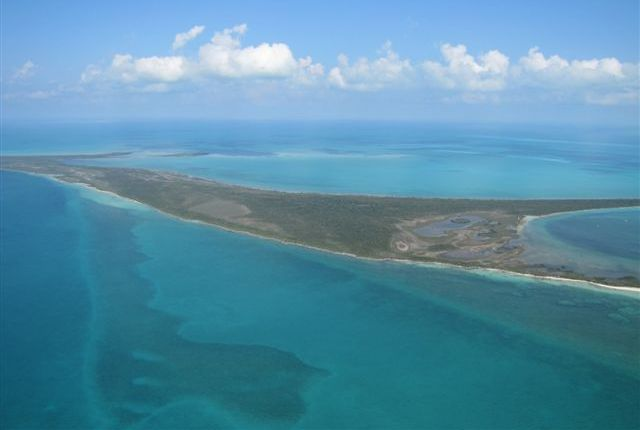 /listing-private-island-for-sale-great-sale-cay-island-has-a-protected-harbour-166.html from Coldwell Banker Bahamas Real Estate