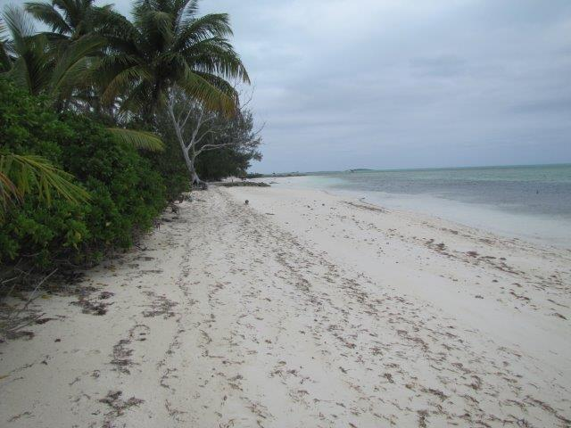 /listing-mangrove-cay-16795.html from Coldwell Banker Bahamas Real Estate