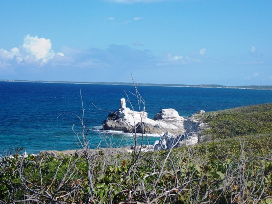 /listing-ocean-view-property-17662.html from Coldwell Banker Bahamas Real Estate
