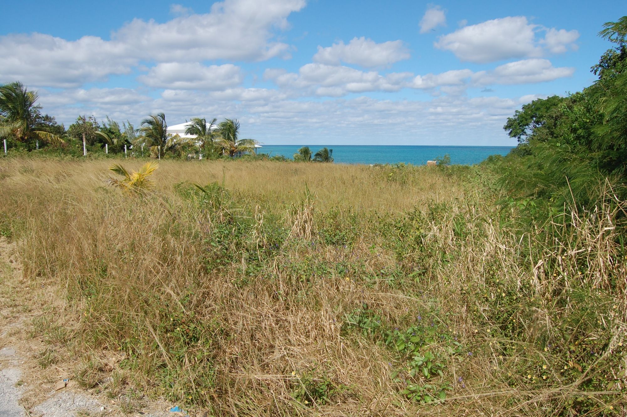 /listing-vacant-lot-russell-island-eleuthera-18158.html from Coldwell Banker Bahamas Real Estate