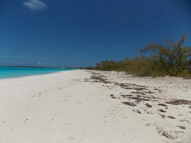 /listing-beautiful-beach-front-lot-20786.html from Coldwell Banker Bahamas Real Estate