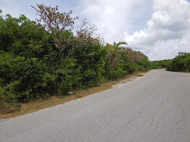 /listing-oleander-gardens-lot-20-21367.html from Coldwell Banker Bahamas Real Estate