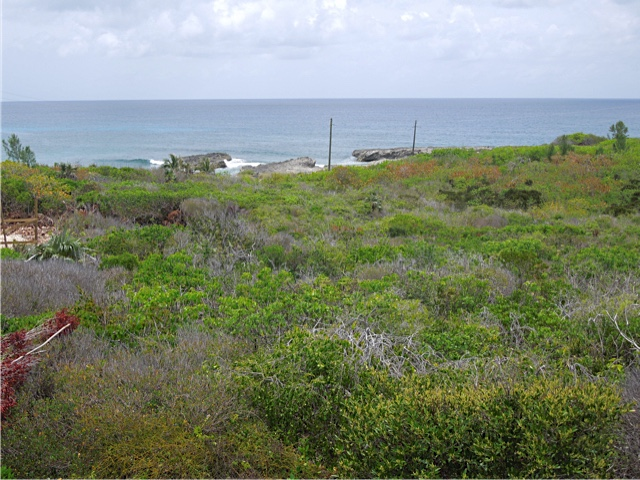 /listing-rainbow-bay-lot-59-block-40-21368.html from Coldwell Banker Bahamas Real Estate