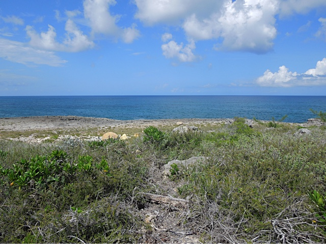 /listing-whale-point-lot-15-22326.html from Coldwell Banker Bahamas Real Estate