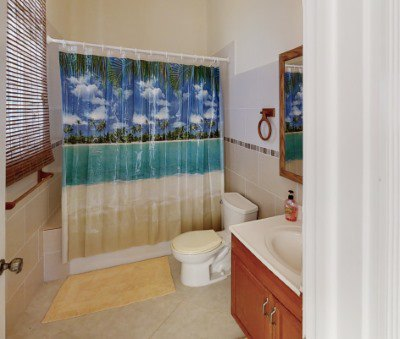 Long Island Guest Bathroom