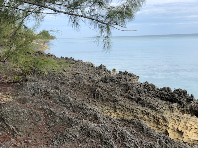 /listing-pelican-bay-lot-8-25282.html from Coldwell Banker Bahamas Real Estate