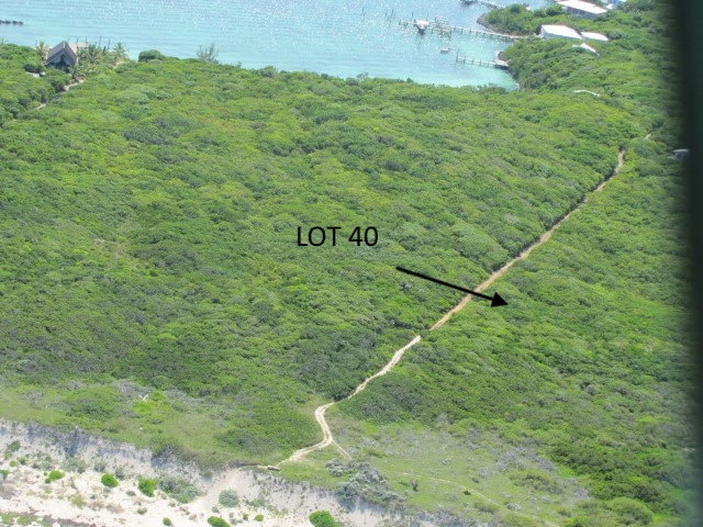 /listing-lot-40-tilloo-beach-subdivision-tilloo-cay-abaco-26392.html from Coldwell Banker Bahamas Real Estate