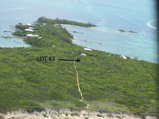 /listing-lot-43-tilloo-beach-subdivision-tilloo-cay-abaco-26393.html from Coldwell Banker Bahamas Real Estate