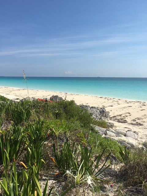 /listing-great-harbour-cay-lot-37-block-13-26501.html from Coldwell Banker Bahamas Real Estate