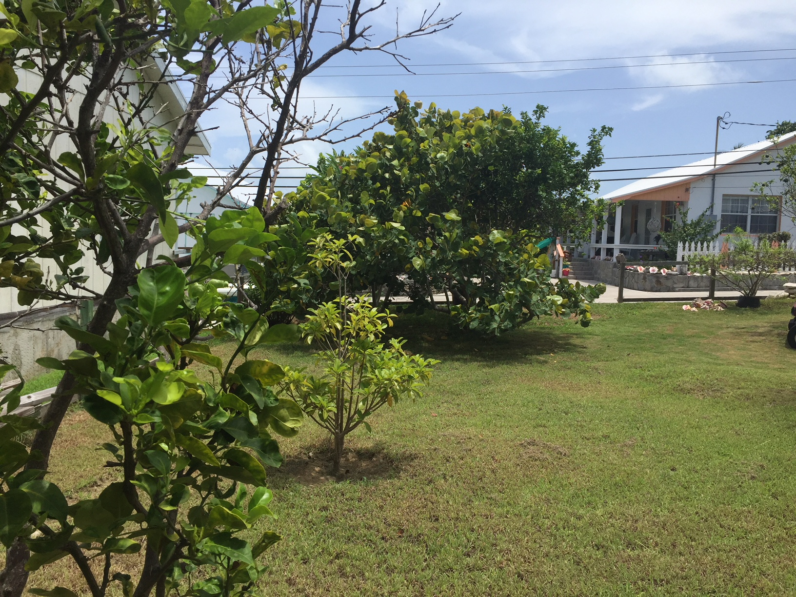 Man O War Cay property for sale
