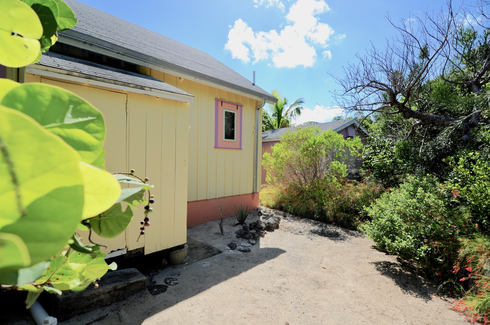 Seagrapes in Man-O-War Cay colorful island home for sale