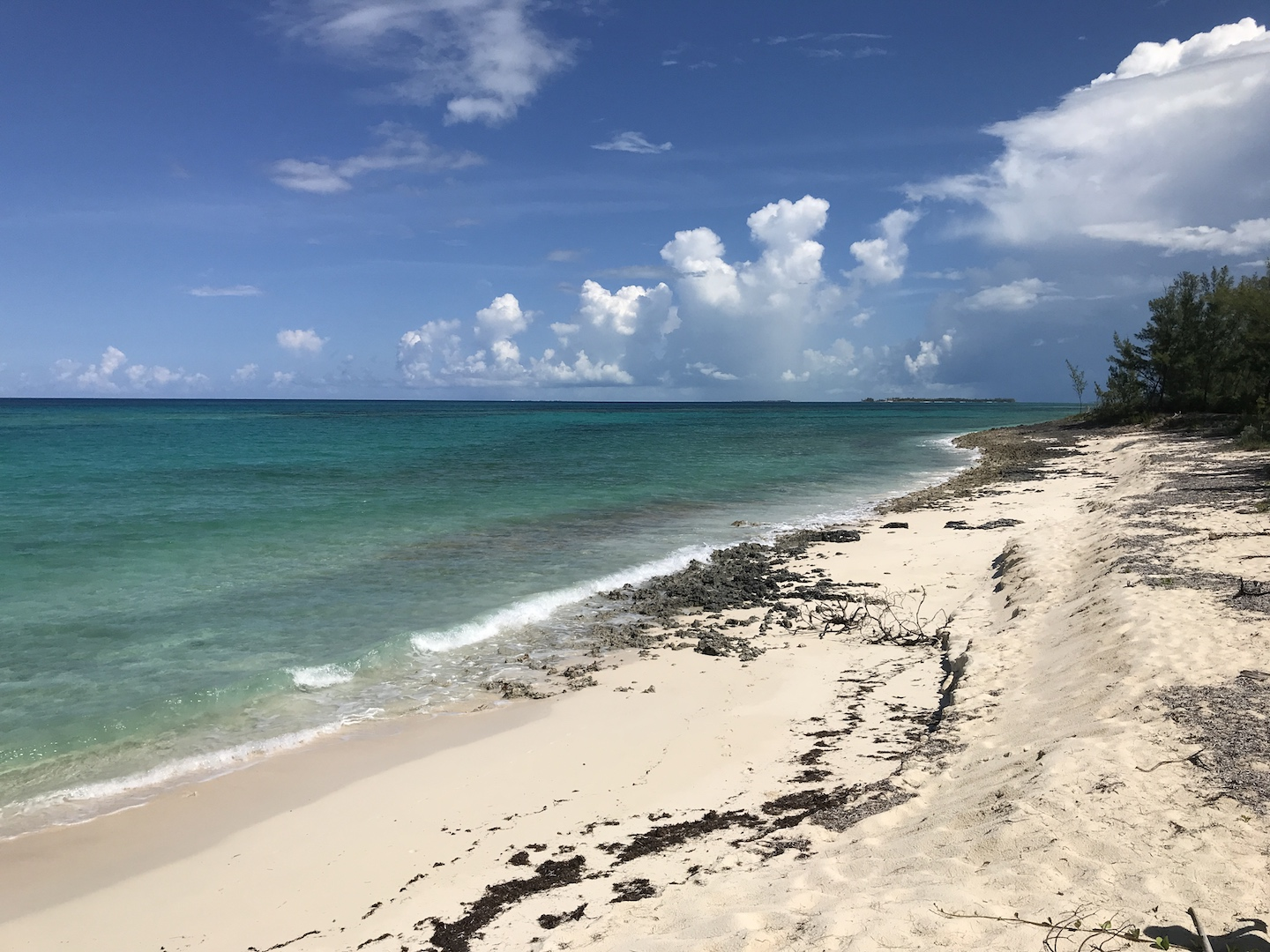 Atlantic Ocean View Lot for sale in Green Turtle Estates
