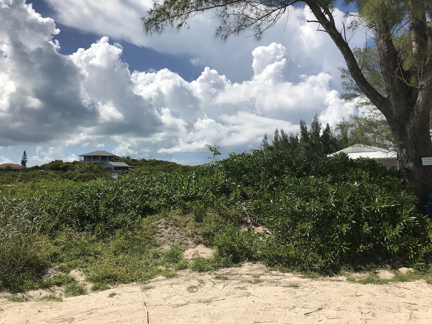 Atlantic Ocean View Lot for sale in Green Turtle Estates steps from the beach