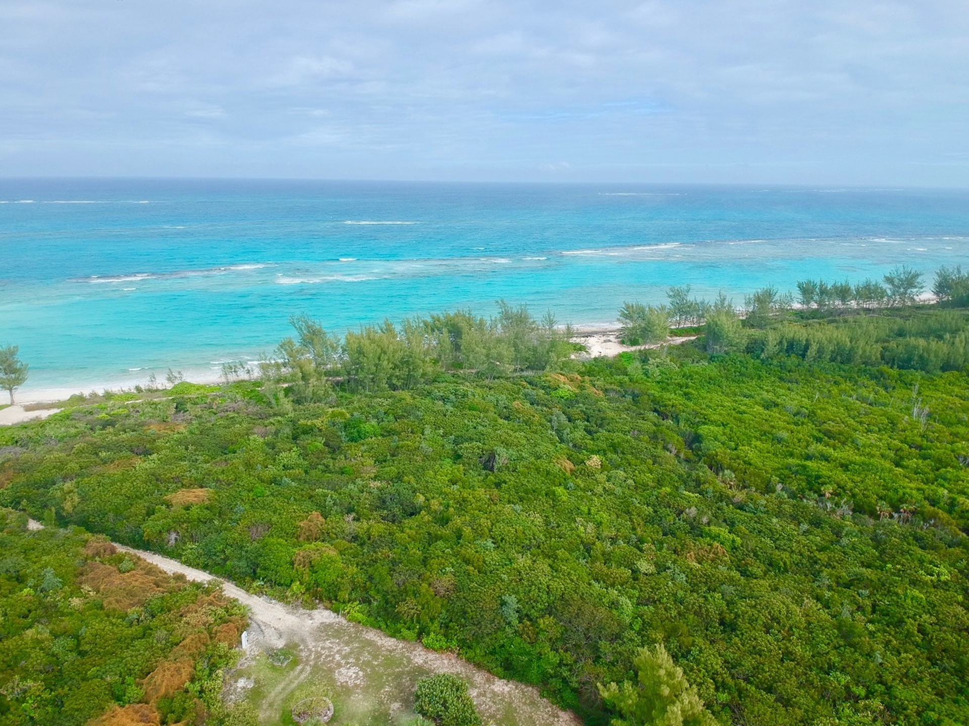 Ocean View Property for sale in Green Turtle Cay