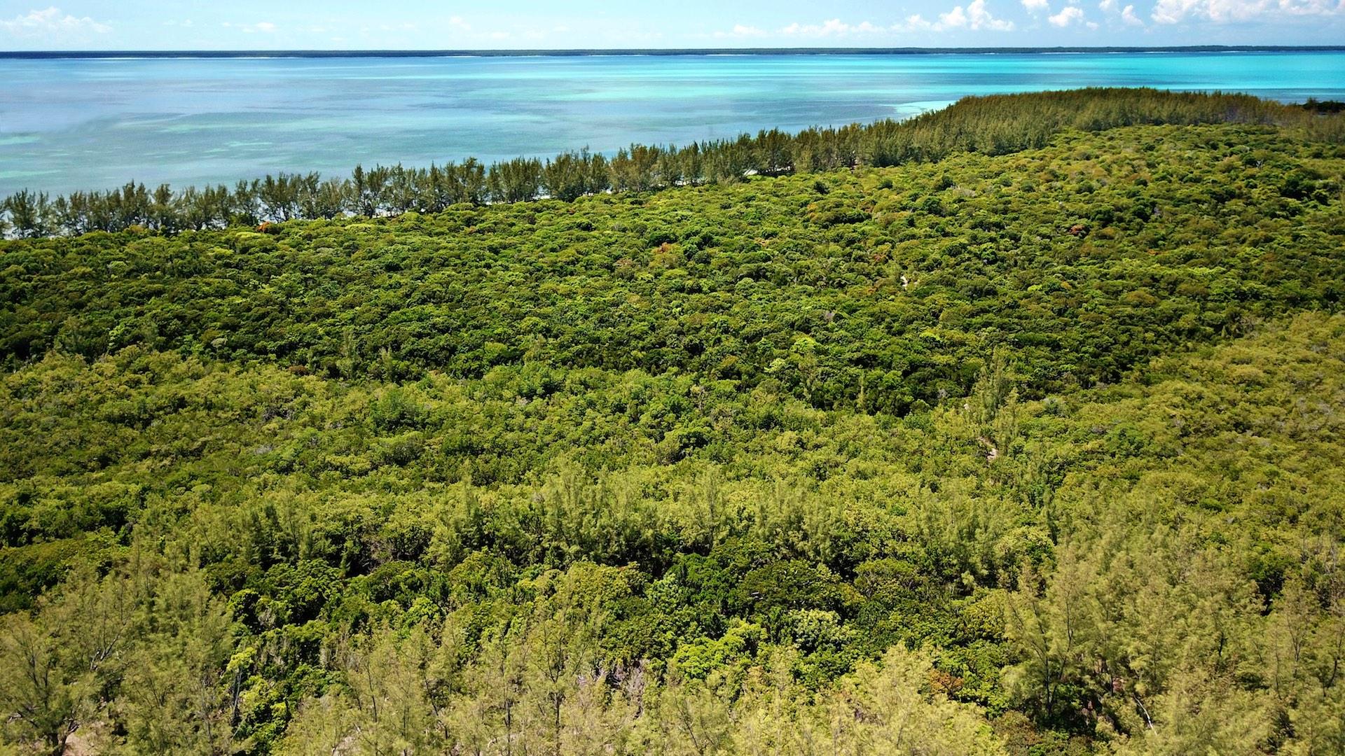 Sea to sea beachfront acreage on Munjack Cay for sale