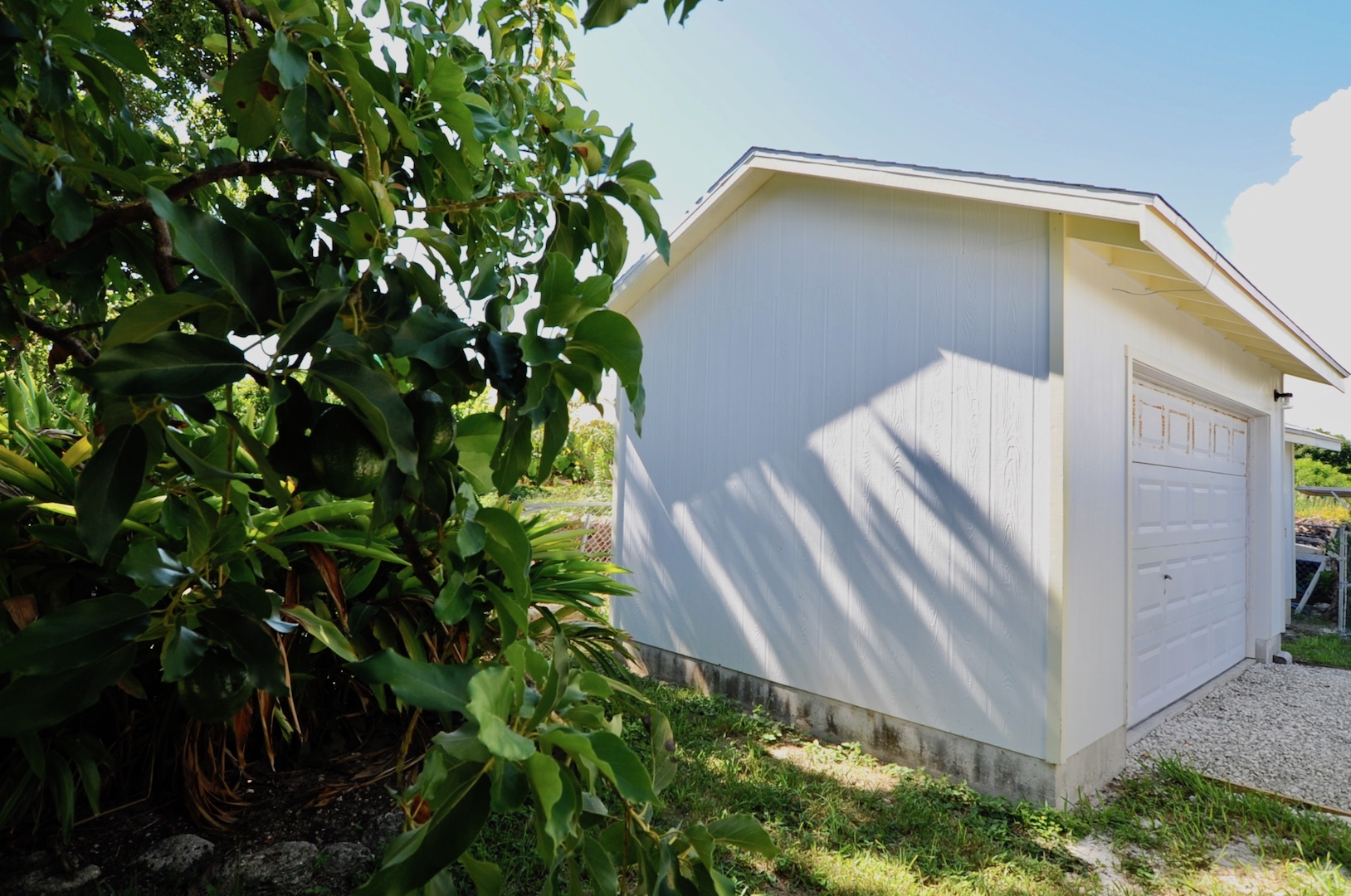 Home for sale in Man-O-War Cay Abaco with golf cart garage and mature fruit trees Avocado Sour Sop