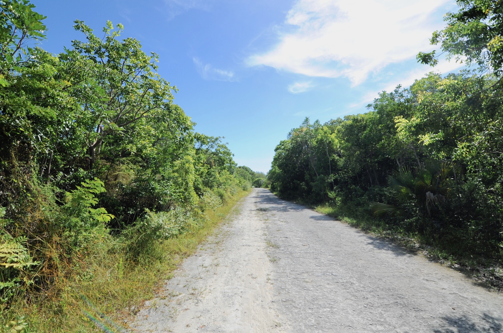 Land for sale in Bahama Palm Shores