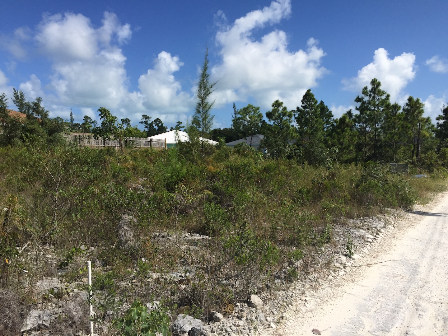 Vacant Land in Sweetings Village Ready to build