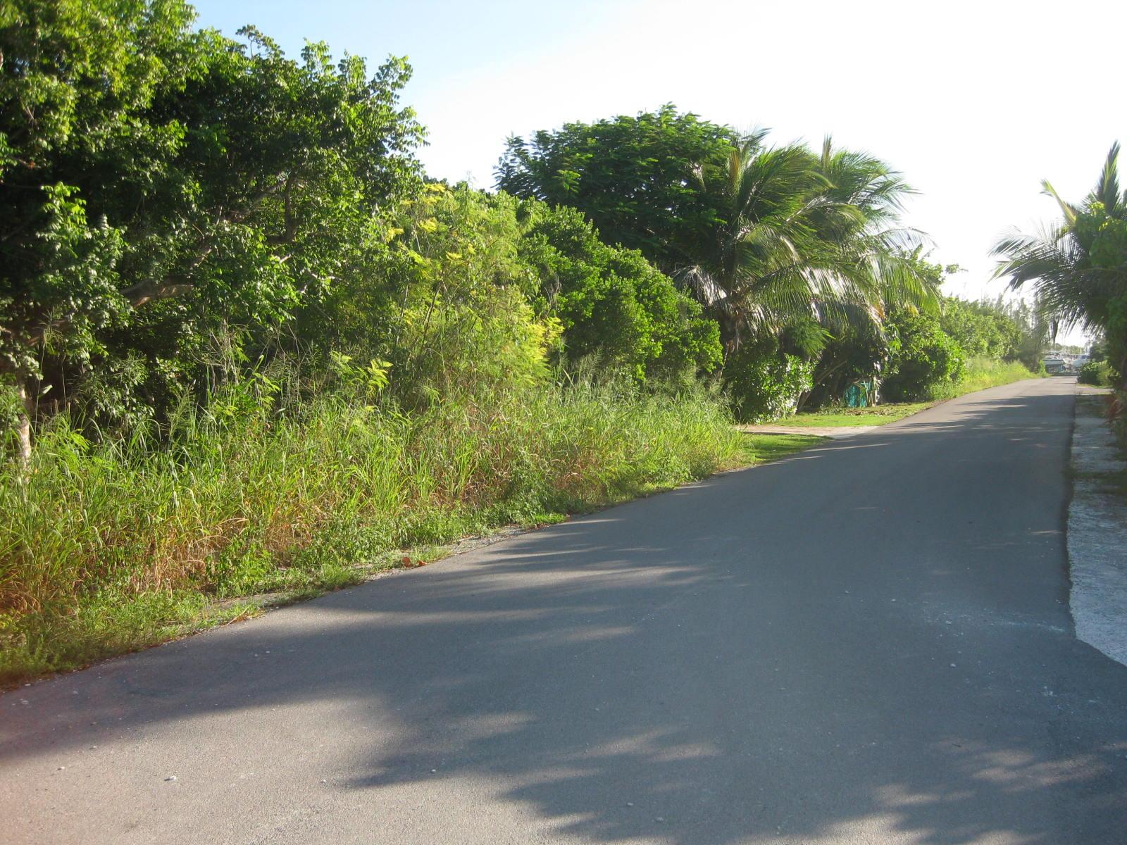 Atlantic Ocean View Lot for sale in Green Turtle Estates