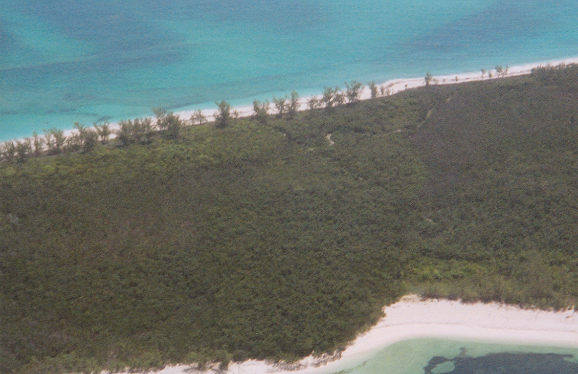 Live off grid just steps away from the beach and a short boat ride from town vacant land for sale on Munjack Cay
