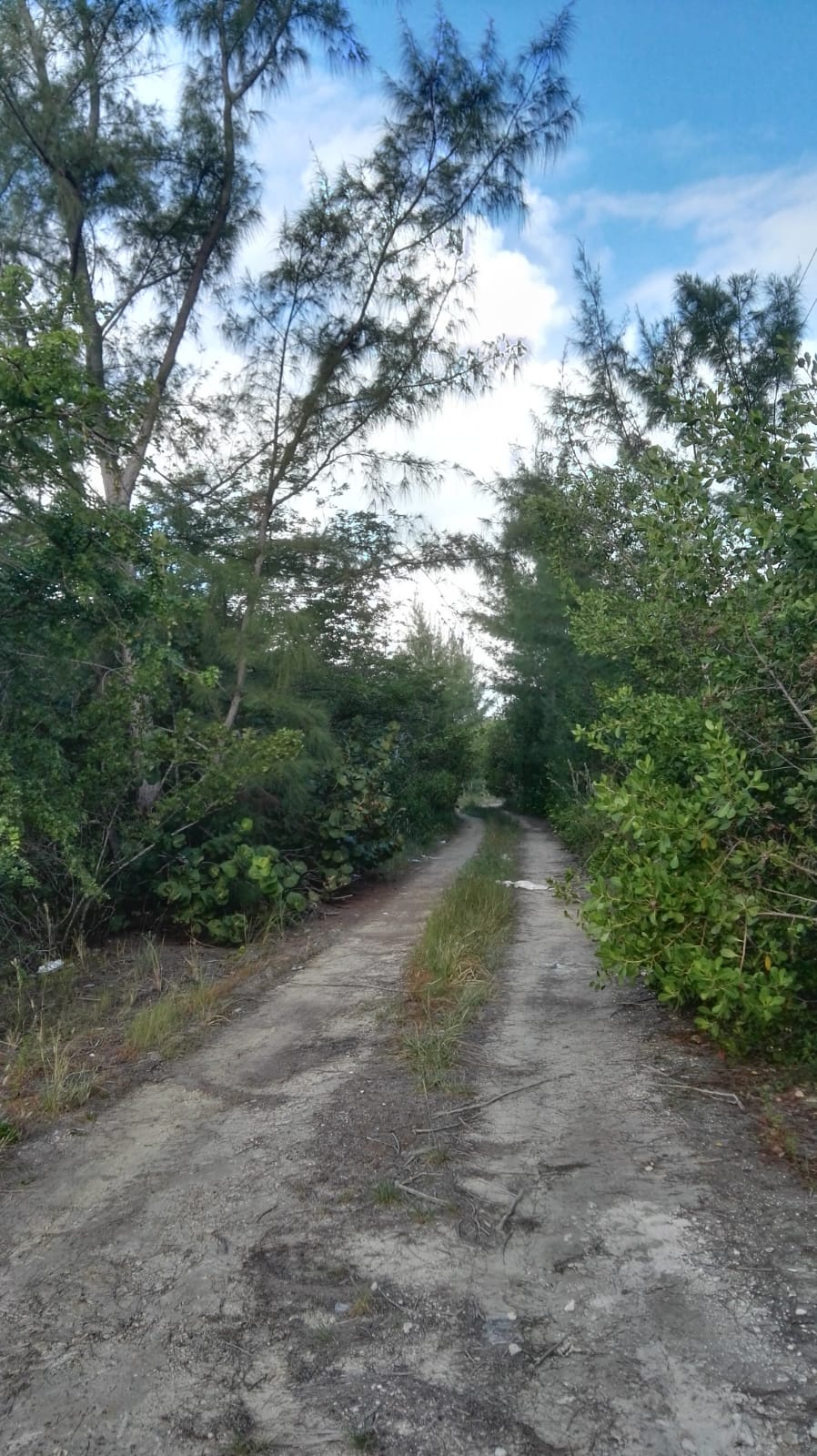 /listing-double-lots-17452-17453-bahama-sound-18-27563.html from Coldwell Banker Bahamas Real Estate